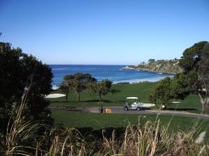 Dana Point condo for sale - golf course near by